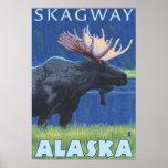 Alces en la noche - Skagway, Alaska Póster
