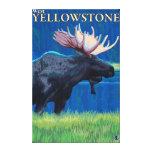 Alces en la noche - Yellowstone del oeste, Montana Impresiones En Lona Estiradas