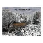 Alces en Nevado Oxbow: Postal de New Hampshire