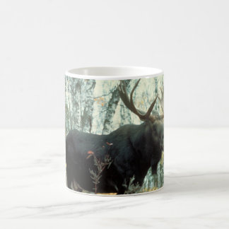 Alces enormes taza