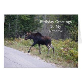 Alces jovenes en el cumpleaños de los tarjeta de felicitación