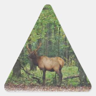 Alces masculinos de Bull en campo del otoño Pegatina Triangular