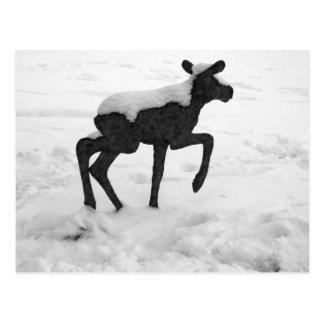 Alces nevados del bebé postales