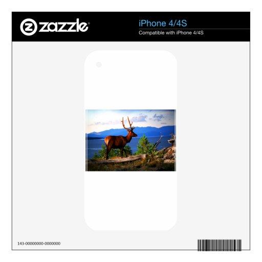 Alces por el lago Yellowstone Calcomanía Para iPhone 4S