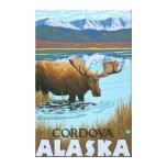 Alces que beben en el lago - Cordova, Alaska Impresión En Lona Estirada