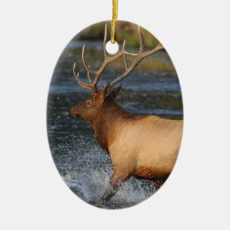alces que salpican en el agua adorno navideño ovalado de cerámica