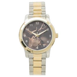 alces relojes de pulsera