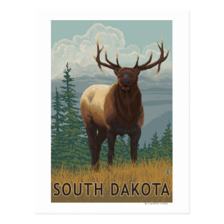 Alces SceneSouth Dakota Postales