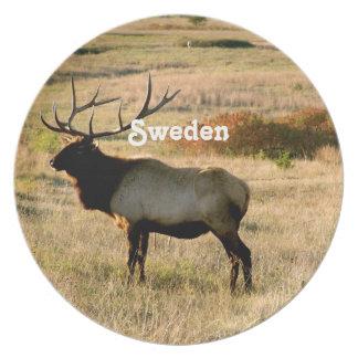 Alces suecos plato para fiesta