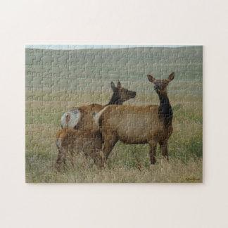 Alces y becerro de la vaca E0061 Puzzle Con Fotos