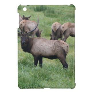 Alces y manada de Bull iPad Mini Funda