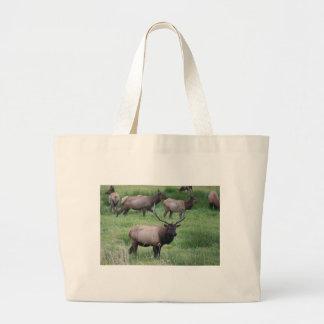 Alces y manada de Roosevelt Bull Bolsa