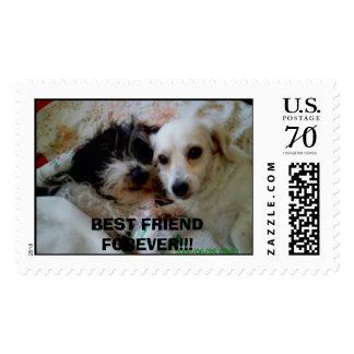 alchem & dhelaila  BEST FRIEND FOREVER!!! Postage