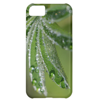 Alchemilla Alpina Alpine Lady's Mantle Leaf Cover For iPhone 5C