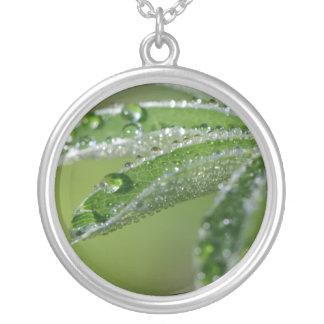 Alchemilla Alpina Alpine Lady's Mantle Leaf Custom Jewelry