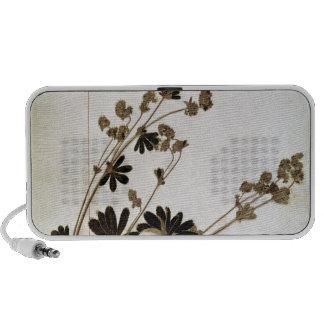Alchemilla, from a Herbarium iPhone Speakers