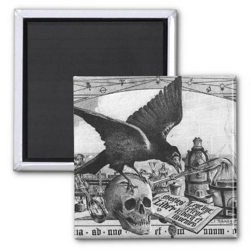 Alchemy Crow and Skull Magnets