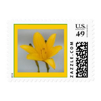 Alchemy Stamp
