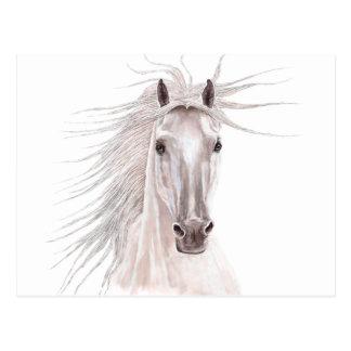 Alcohol del caballo del viento - vendimia postales
