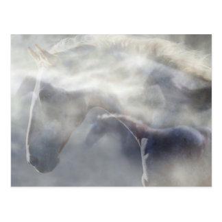 Alcohol del caballo tarjeta postal