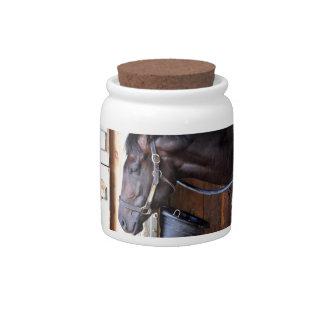 Alcolite- Horse Haven Barns at Saratoga Candy Dish