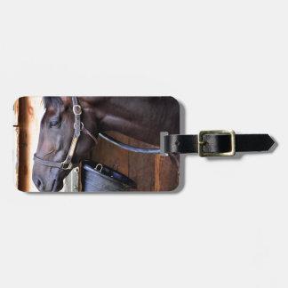 Alcolite- Horse Haven Barns at Saratoga Luggage Tag