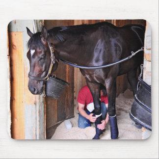Alcolite- Horse Haven Barns at Saratoga Mouse Pad