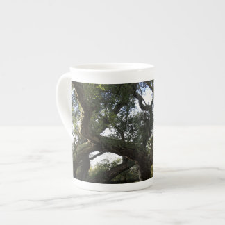 Alcornoque o árbol del corcho, árbol elegante tazas de china