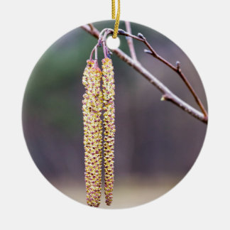 Alder twigs with yellow hanging catkins in spring ceramic ornament