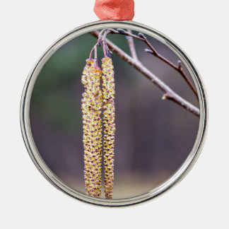 Alder twigs with yellow hanging catkins in spring metal ornament