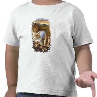 Alegoría de la fortuna cambiante, o melancolía (ac camisetas