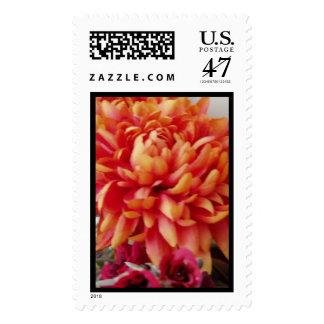 alegría anaranjada sello postal