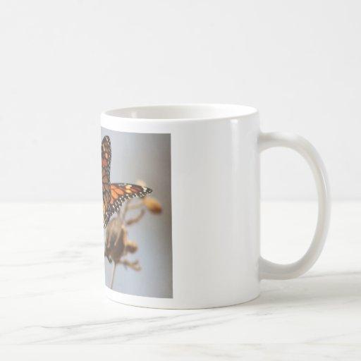 Alegría de la mariposa tazas de café