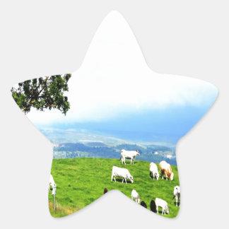 alegría de la paz del pasto del ganado pegatina en forma de estrella
