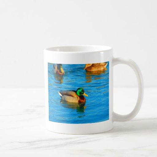 Alegría de la paz en patos salvajes del agua taza clásica