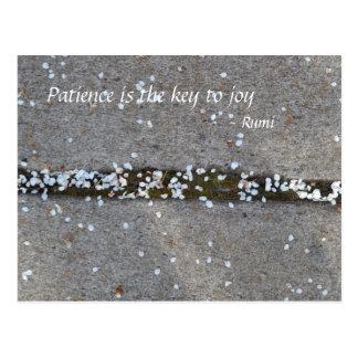 Alegría de Rumi de los pétalos de la primavera Postales