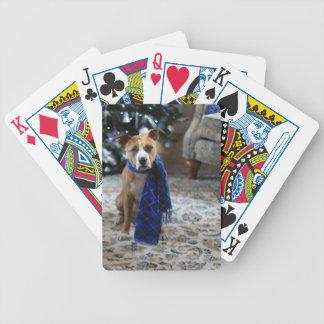 Alegría del día de fiesta del perro del rescate baraja de cartas bicycle