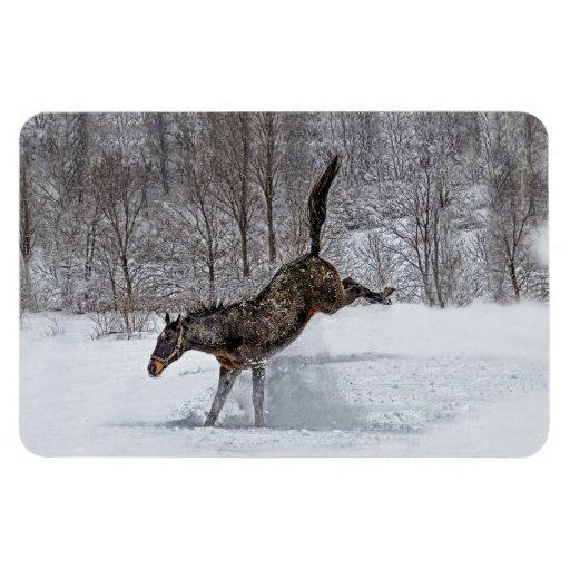 Alegría excelente de la nieve del caballo iman rectangular