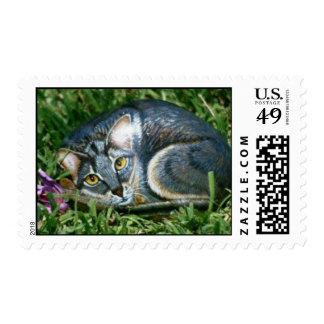 """Aleka"" cat rock stamp"