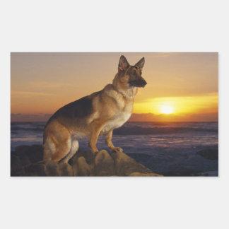 Alemán Shepard en la puesta del sol Pegatina Rectangular