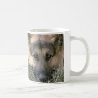 Alemán Shepard Tazas De Café