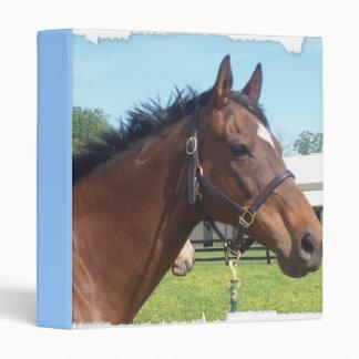Alert Arabian Horse Binder