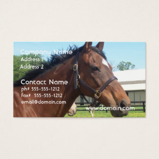 Alert Arabian Horse Business Card