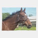 Alert Arabian Horse Kitchen Towel