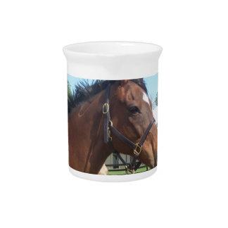 Alert Arabian Horse Pitcher