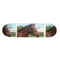 Alert Arabian Horse Skateboard