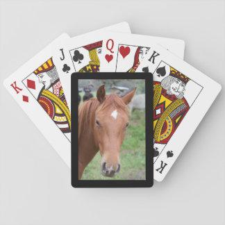 Alert Brown Horse Close-up Black Frame Playing Cards