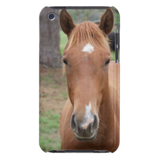 Alert Brown Horse Close-up iPod Touch Covers