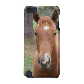 Alert Brown Horse Close-up iPod Touch 5G Cases