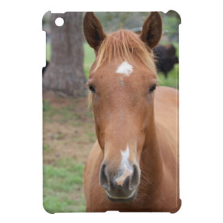Alert Brown Horse Close-up iPad Mini Case